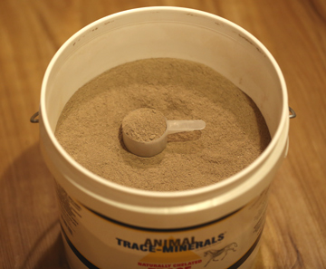 Chelated Trace Minerals for horses